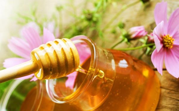 Κόψτε την Πείνα σας με το Μέλι